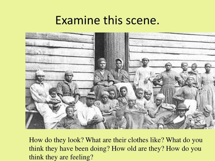 Examine this scene.