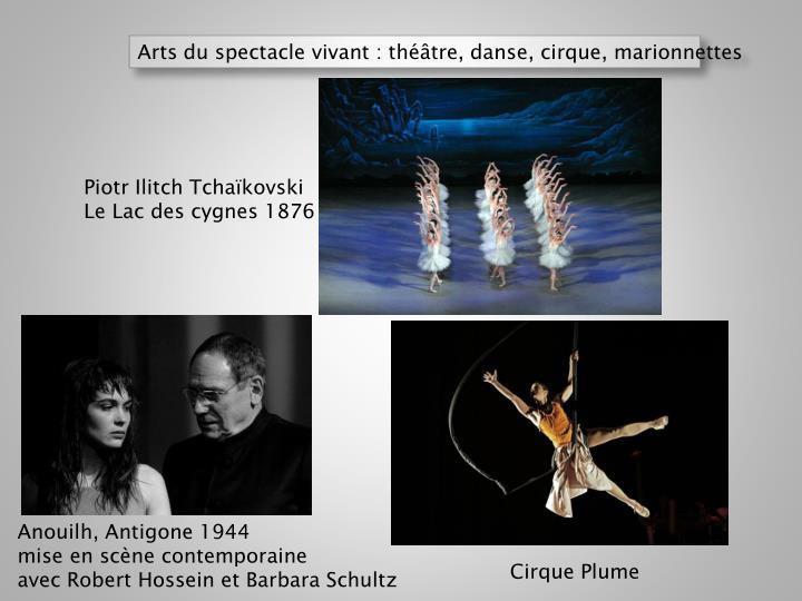 Arts du spectacle vivant : théâtre, danse, cirque, marionnettes