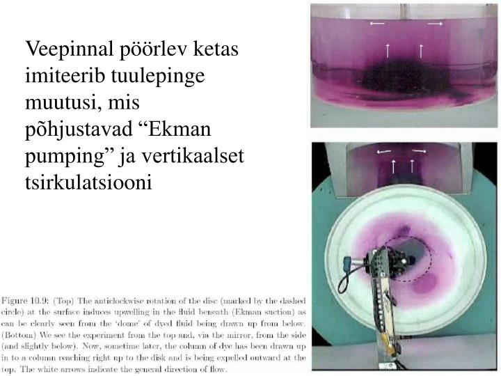 """Veepinnal pöörlev ketas imiteerib tuulepinge muutusi, mis põhjustavad """"Ekman pumping"""" ja vertikaalset tsirkulatsiooni"""