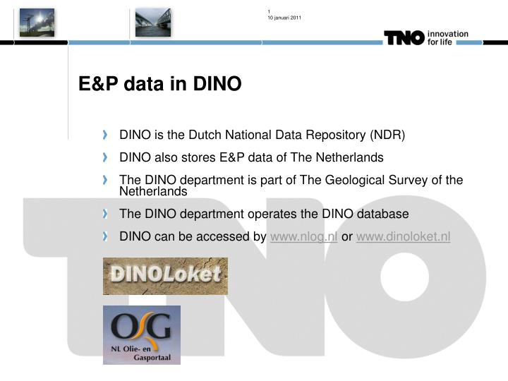 E&P data in DINO