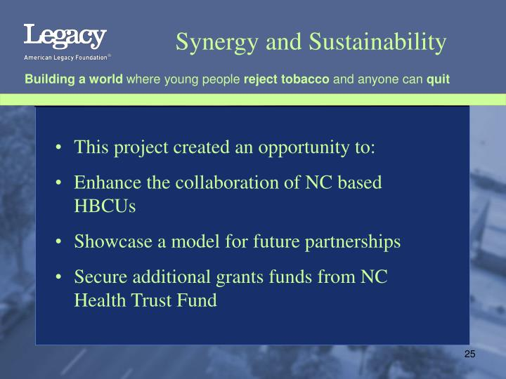 Synergy and Sustainability