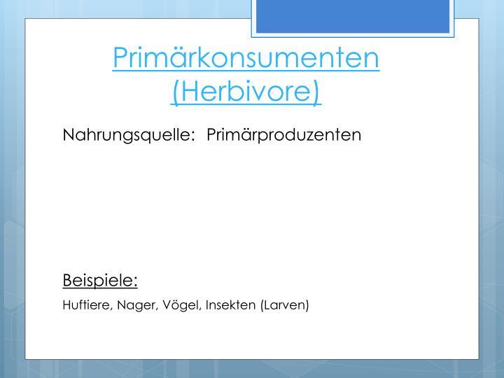 Primärkonsumenten (Herbivore)