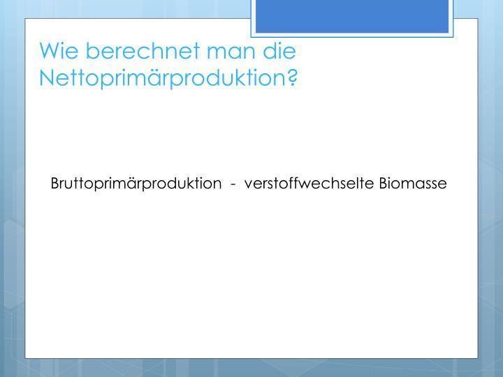 Wie berechnet man die Nettoprimärproduktion?