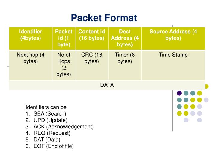 Packet Format