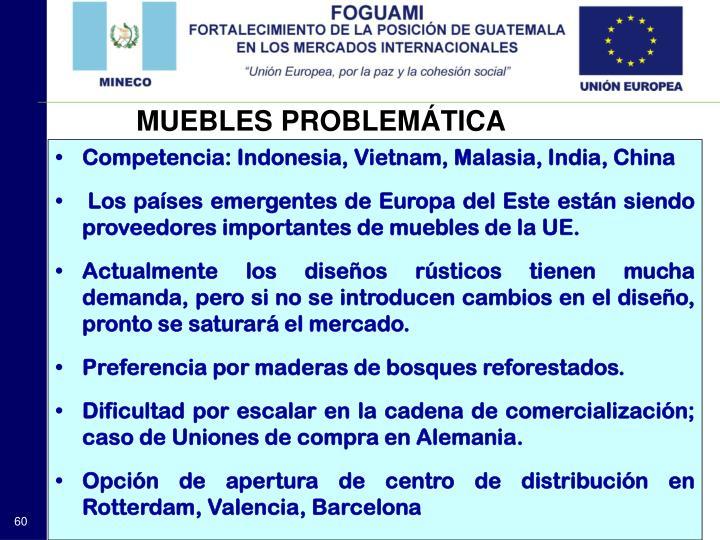 MUEBLES PROBLEMÁTICA