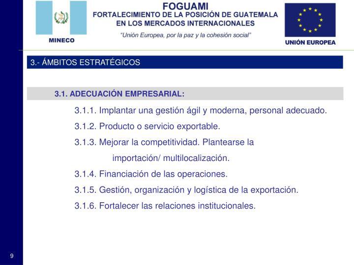 3.- ÁMBITOS ESTRATÉGICOS