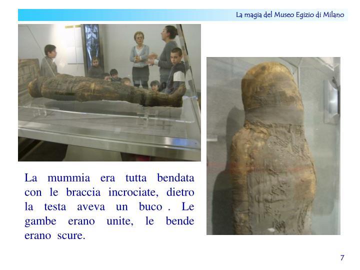 La  mummia  era  tutta  bendata  con  le  braccia  incrociate,  dietro   la  testa  aveva  un  buco .  Le  gambe  erano  unite,  le  bende  erano  scure.