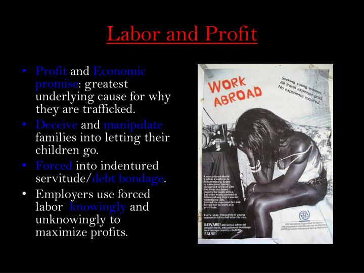 Labor and Profit