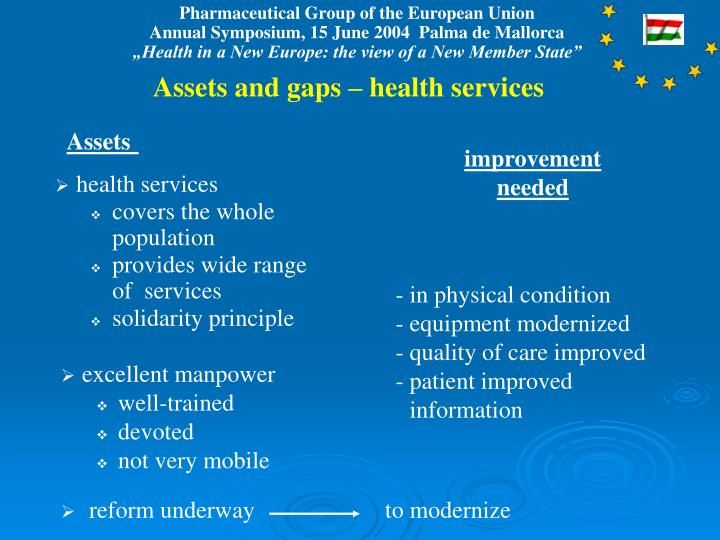 Assets and gaps – health services