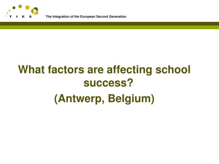 What factors are affecting school success?