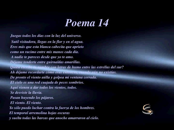Poema 14