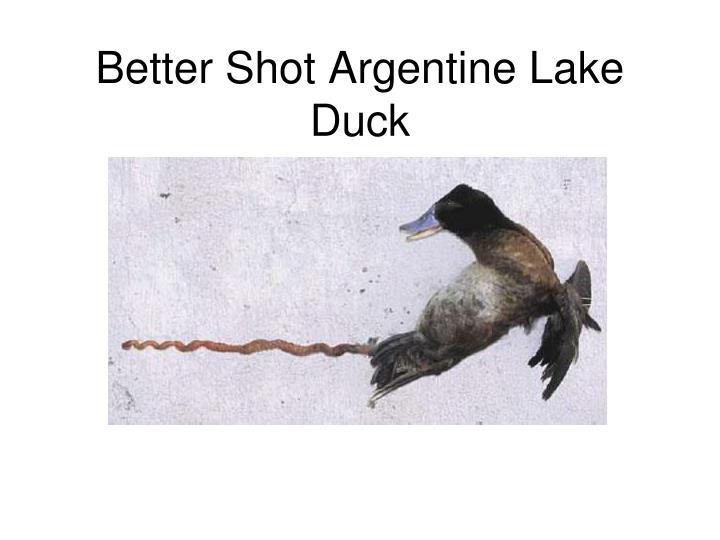 Better Shot Argentine Lake Duck