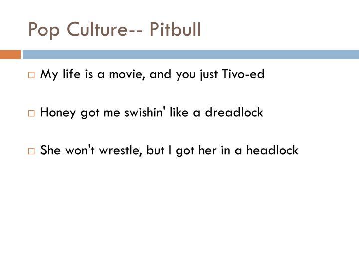 Pop Culture-- Pitbull