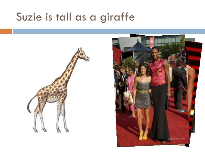 Suzie is tall as a giraffe