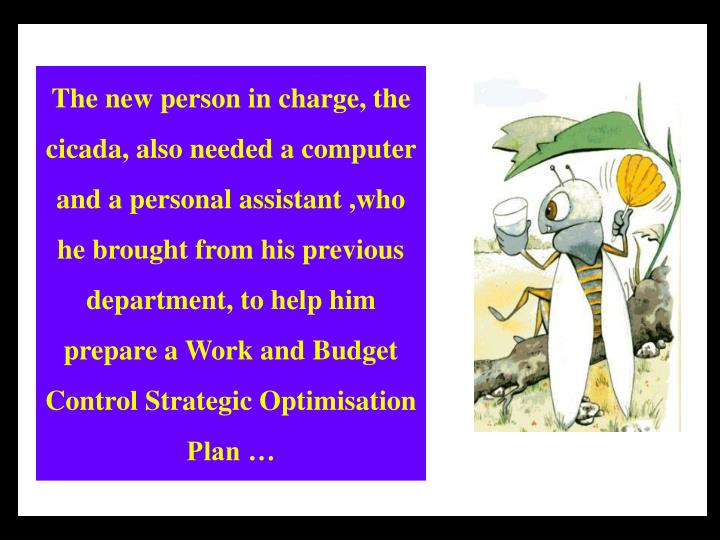 The new person in charge, the cicada, also needed a computer and a personal assistant ,who he brought from his previous department, to help him prepare a Work and Budget Control Strategic Optimisation Plan …