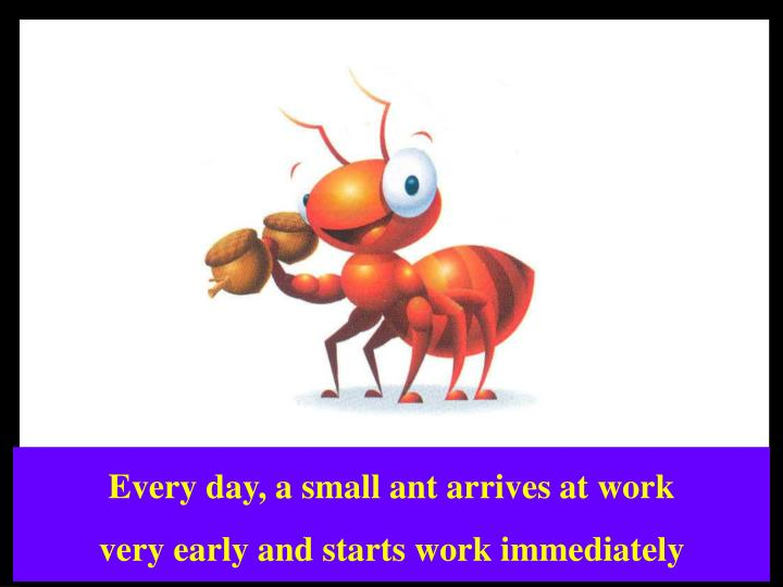 Every day, a small ant arrives at work