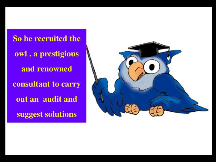 So he recruited the owl , a prestigious and renowned consultant to carry out an  audit and  suggest solutions