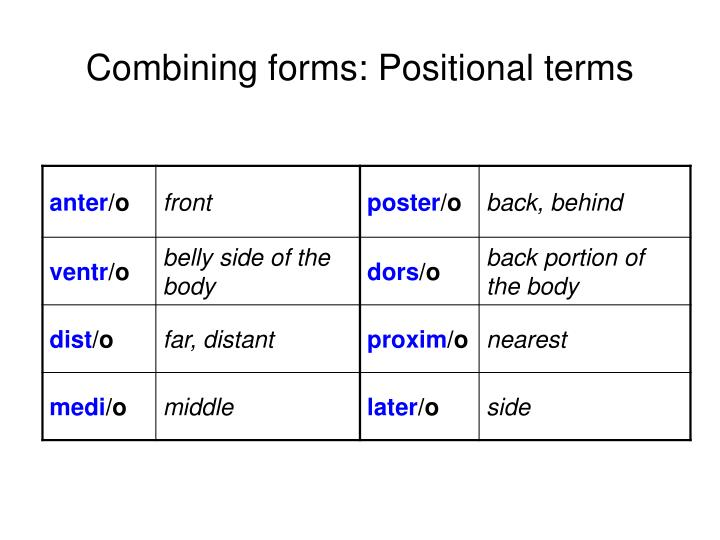 Combining forms: Positional terms