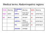 medical terms abdominopelvic regions
