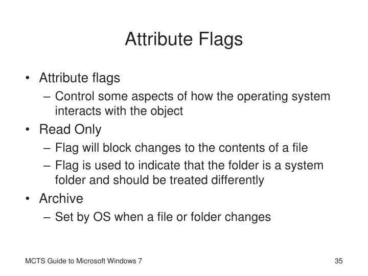 Attribute Flags