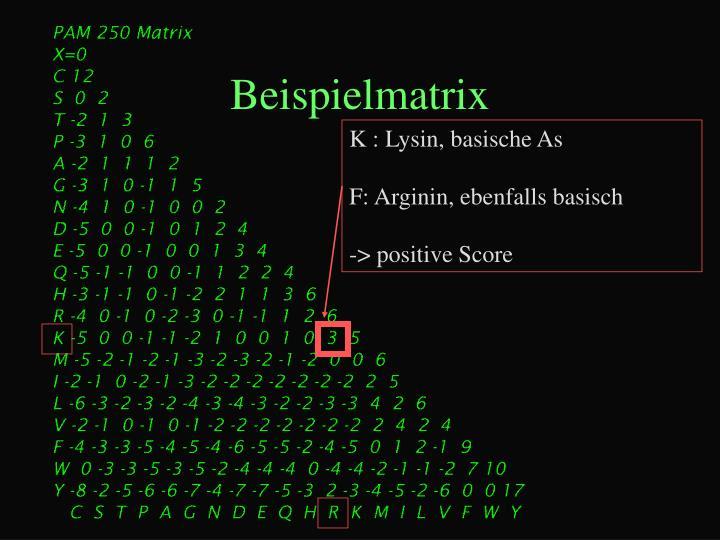 Beispielmatrix