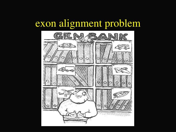 exon alignment problem