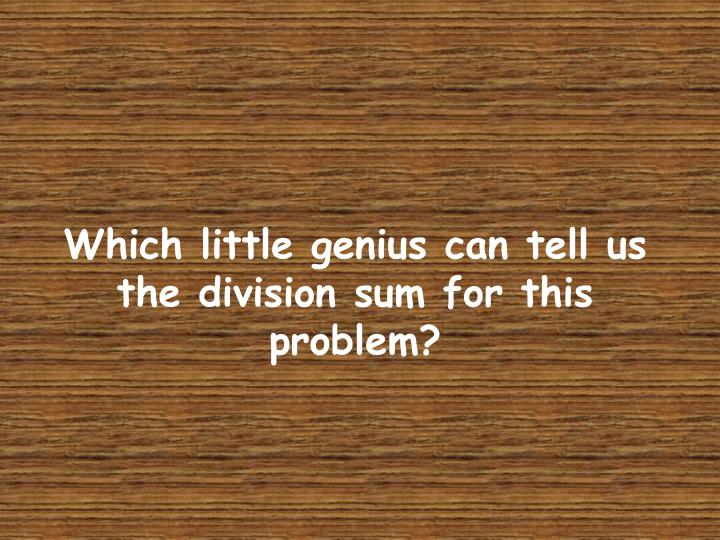 Which little genius can tell us the division sum for this problem?