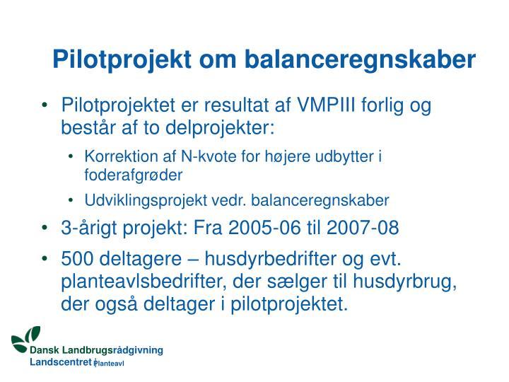 Pilotprojekt om balanceregnskaber