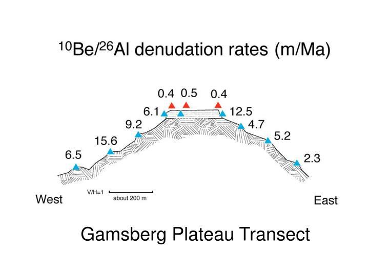 Gamsberg Plateau Transect