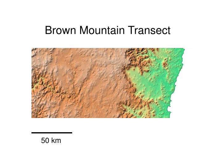 Brown Mountain Transect