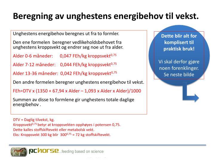 Beregning av unghestens energibehov til vekst.