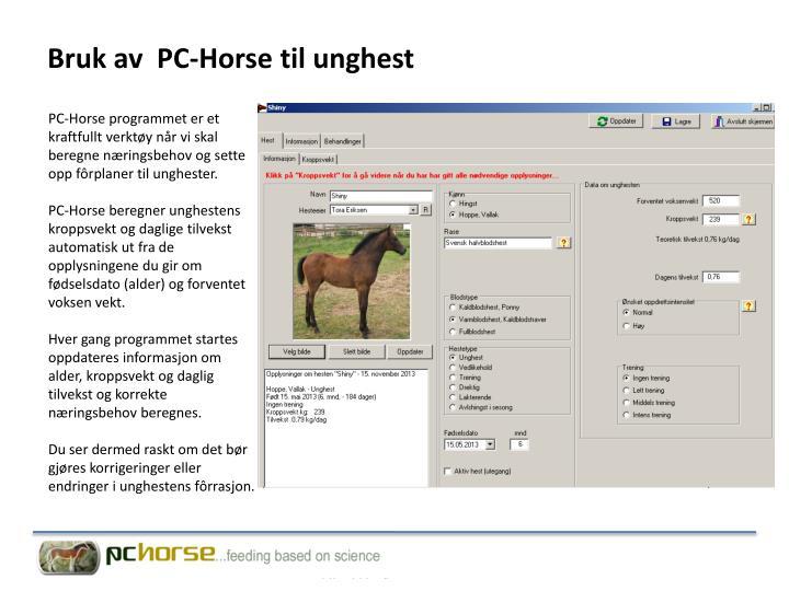 Bruk av  PC-Horse til unghest