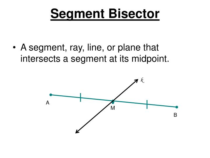 Segment Bisector