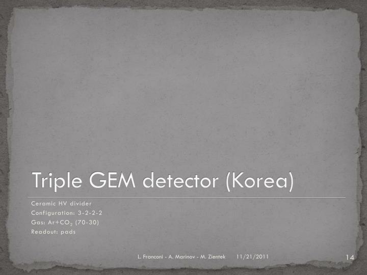 Triple GEM detector (Korea)