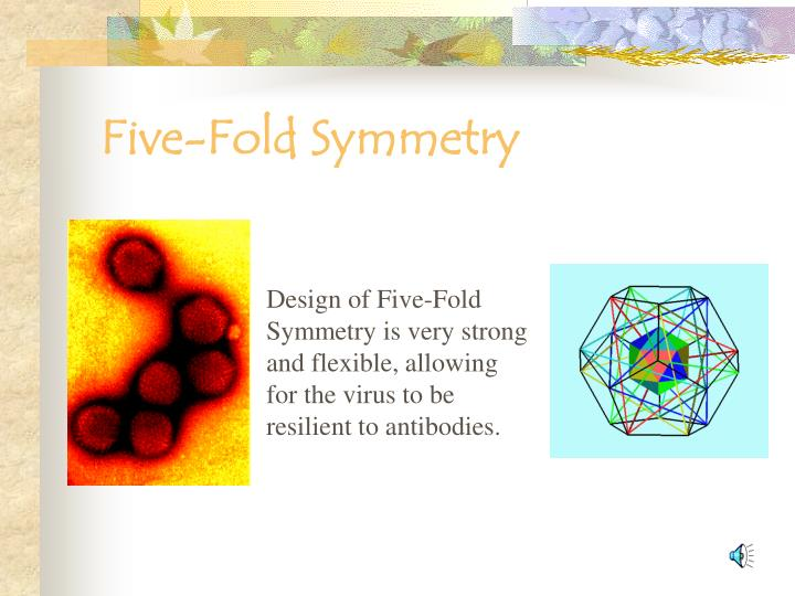 Five-Fold Symmetry