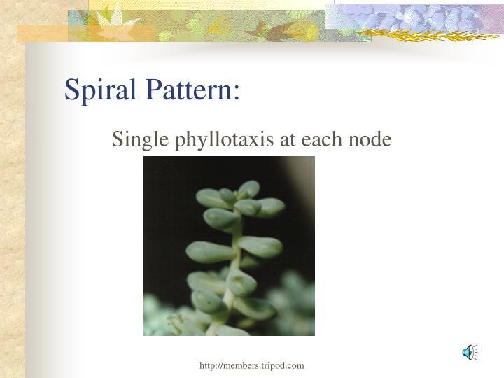 Spiral Pattern: