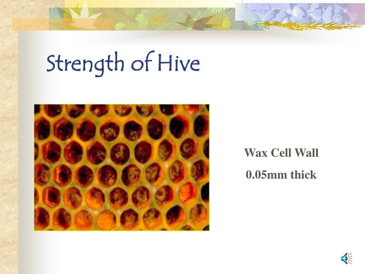 Strength of Hive