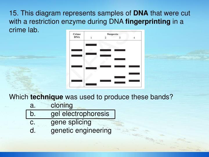 15. This diagram represents samples of