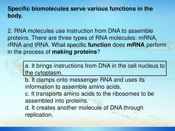 Specific biomolecules serve various functions in the body.