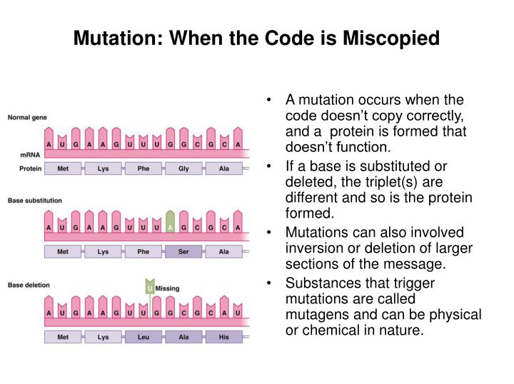 Mutation: When the Code is Miscopied