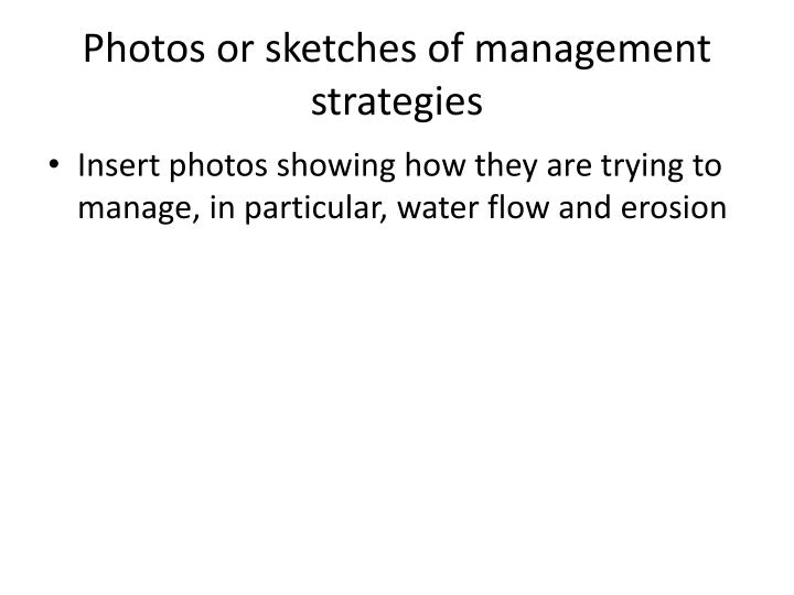 Photos or sketches of management strategies