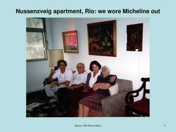 Nussenzveig apartment, Rio: we wore Micheline out