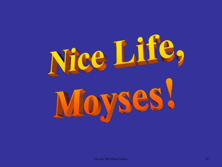 Nice Life,