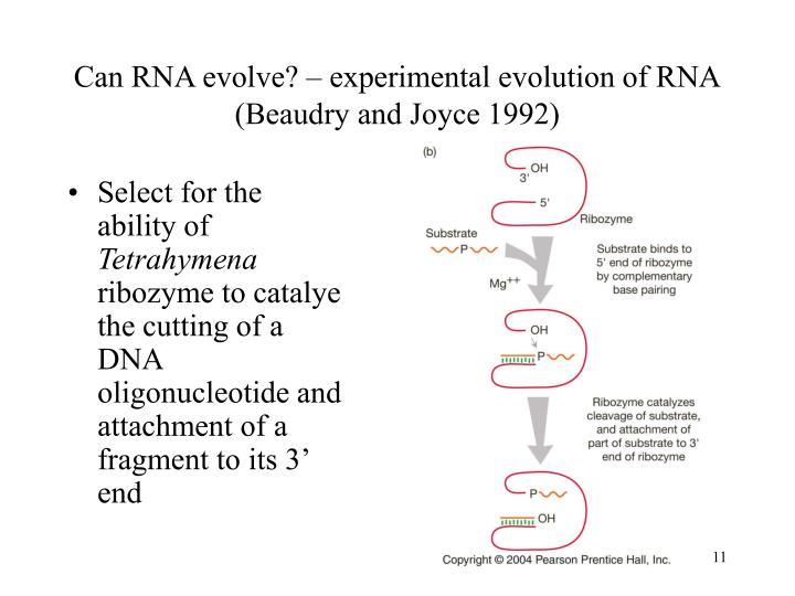 Can RNA evolve? – experimental evolution of RNA