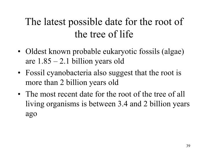 The latest possible date for the root of the tree of life