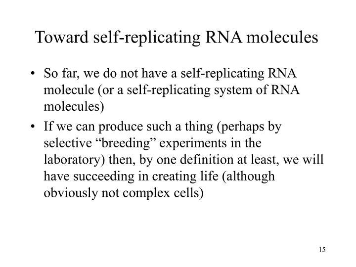 Toward self-replicating RNA molecules