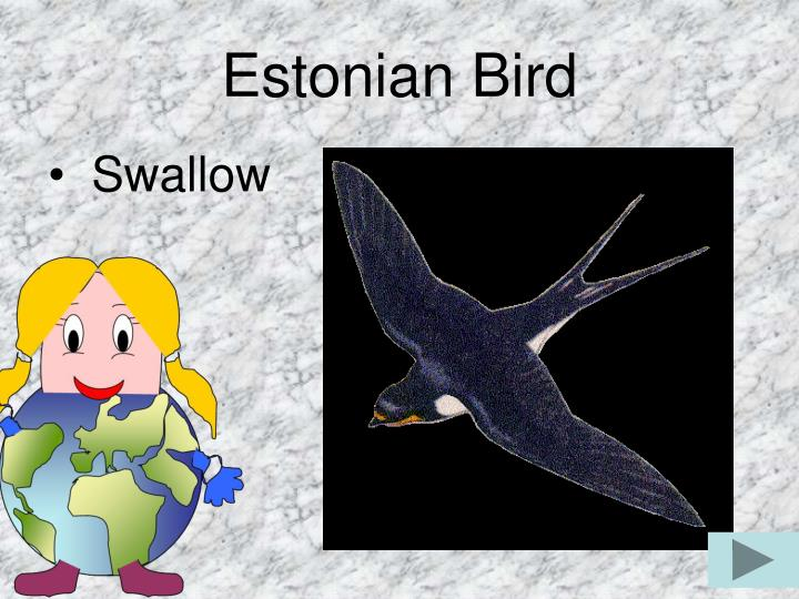 Estonian Bird