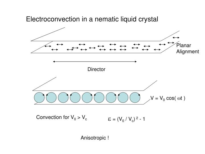 Electroconvection in a nematic liquid crystal