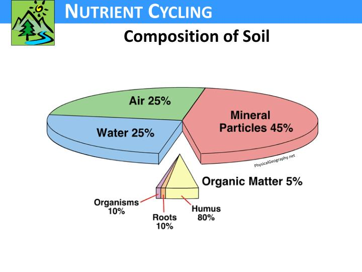 Composition of Soil
