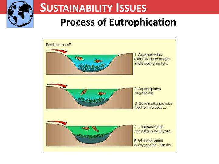Sustainability Issues